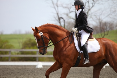 Christine Betz Dressage New Blessing Farm